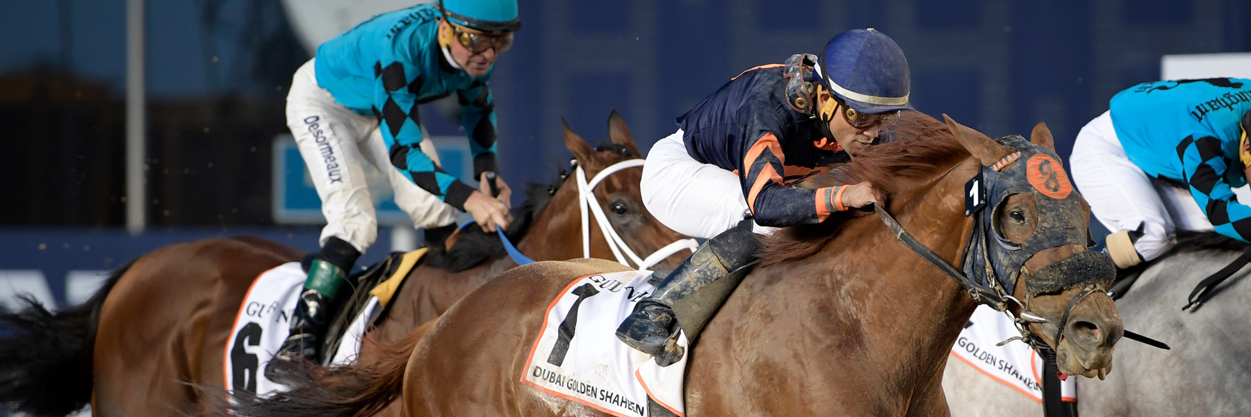 Mind Your Biscuits - 18 Dubai Golden Shaheen - NYB