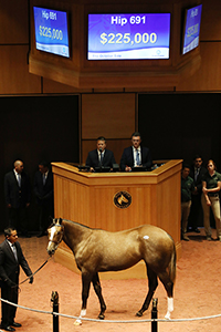 fasig-tipton october sale liam's map