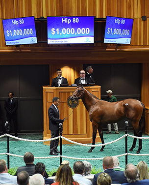 fasig tipton saratoga tapit colt million dollar