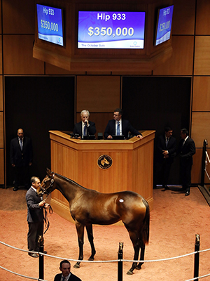 october sale uncle mo filly fasig-tipton